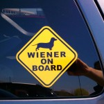 Wiener on board