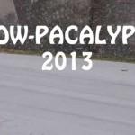 Snowpacalypse Pics